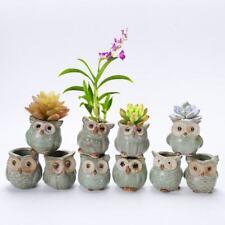 Mini Ceramic Owl Pot Succulent Plant Container Small Flower Planter Garden Decor