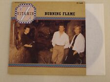 "VITAMIN Z Burning Flame - 3 Track 12"" Maxi NM"
