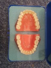 Invisalign Typodont Models Upper and Lower with Attachments and Aligners