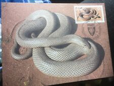 Snakes in Venda 16.01.1986 Sibasa Maximumcard Pseuddaspis Cana