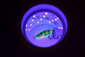 GLOW CUP FOR CHARGING ICE FISHING LURES - COMPATIBLE WITH VEXILAR, MADE IN USA