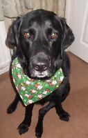 CHRISTMAS DOG BANDANA SLIDE ON COLLAR LOVELY GIFT GREEN & RED SANTA DESIGN
