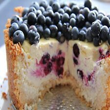Blueberry Cheesecake Fragrance Oil Candle/Soap Making Supplies *Free Shipping*