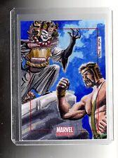 2014 Marvel Universe  Matias Streb sketch card