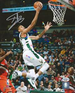 Giannis Antetokounmpo Milwaukee Bucks  Autographed Signed 8x10 Photo Reprint