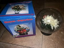 Blumen Aquarium Glass Globe Floral arrangement Vase Bowl For Fake OrReal Flowers