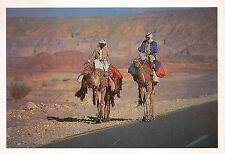 BG9441 the legend of bedouin and camel egypt  types folklore