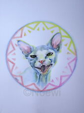 Original illustration painting by Noewi - Sphynx Cat Lara kitty kitten hairless