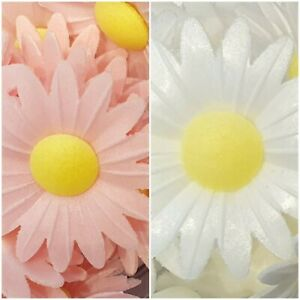 Edible Wafer Daisy In Pink or White - Cake Decorations - MULTI LISTING