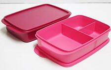 Tupperware Large Divided Lunch Box Sandwich Keeper 1.0L Set Of 2 - Free Shipping