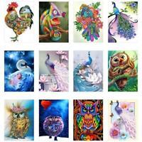 Peacock Owl 5D Full Drill Diamond Painting Embroidery Cross Stitch Kit DIY Decor