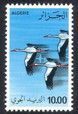 Algeria 1979 White Storks/Birds/Nature/Plane/Airmail 1v (n39313)
