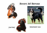 Llavero Piel Auténtica Hombre Mujer Razas Perros Boyero La Bernese