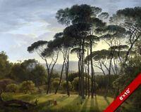ITALIAN UMBRELLA PINE LANDSCAPE SCENE FINE ART PAINTING REAL CANVAS 8X10PRINT