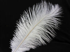 1  Gorgeous White Ostrich Feather Hat Decor Costume Book Mark Tickling Feather