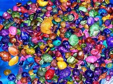 1/2 LB SMALL  DYED MULTI COLORED MIXED  SEA SHELLS BEACH  DECOR NAUTICAL CRAFT