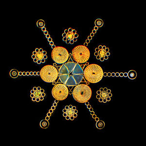 Exhibition microscope slide star pattern of 127 diatoms created by Klaus Kemp