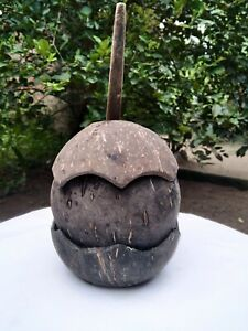 Eco friendly Organic,Handmade Coconut Shell Salt Container & Spoon Kitchen Tool