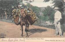 GUSTAF ADOLFS TORG MEF STORE NYGATAN MALMO SWEDEN TO USA PIANO POSTCARD 1907