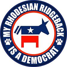 "My Rhodesian Ridgeback Is A Democrat 5"" Dog Sticker"