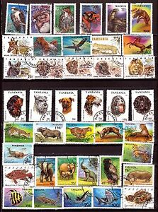 Tanzania all The Categories of The Fauna Navy, Terrestrial, Aerienne PR605