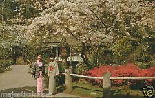 "San Francisco Postcard - ""Japanese Tea Garden"" | Mirro-Krome/HS Crocker"