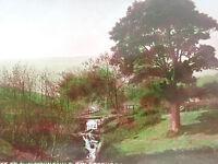 Vintage Postcard- Entrance To Auchmount Glen, Greenock With Stamp(253)
