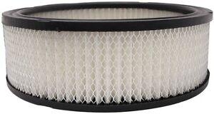 LUBER-FINER AF115 Air Filter,for 63-89 GM Trucks, 250-292 6