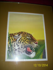 Charles Freeman signed print wildlife spoted leopard great artist done well