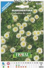 MARGHERITINA SELVATICA DEI PRATI- AIUOLE BORDURE ROCCIOSI-FLORAL - BUSTA SEMENTI