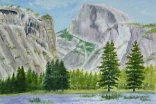 ORIGINALE dipinto ad Acquerello Metà Cupola, Yosemite NP, in California, Stati Uniti