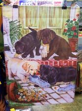 New listing Mischievous Labrador Puppies chewing shoes, Dogs playing, House flag
