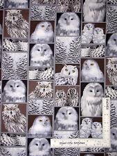 Owl Fabric - Hoot Bird Snow Owl Great North Wilderness #5037 Benartex - 1.75 Yds
