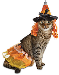 Halloween Bootique Witch Dog Costume, Witch Cat Costume, Large-X-Large