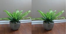 2 Artificial Grass Boston Silk Fern Leaf Home Restaurant Decor