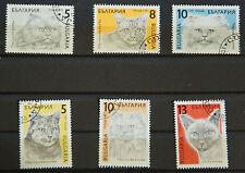 Briefmarken Bulgarien Rassekatzen von 1989