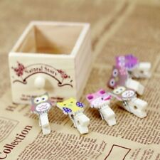 10Pcs/lot Creative Owl Shaped Wooden Clips with Rope Photo Art Hanging Album