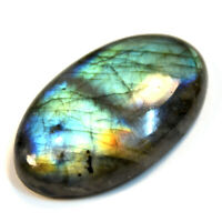 Cts. 43.35 Natural Labradorite Full Fire Cabochon Oval Cab Loose Gemstone