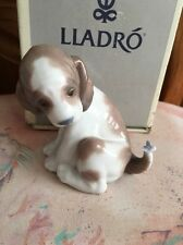 Lladro 6210 Gentle Surprise Dog with Butterfly on Tail Mint! Original Grey Box!