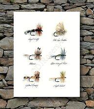 "Fly Fishing ""TROUT FLIES"" Watercolor 8 x 10 ART Print Signed by Artist DJR"