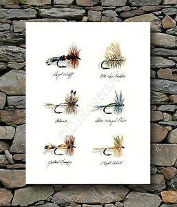 "Fly Fishing ""TROUT FLIES"" Watercolor 8 x 10 Art Print by Artist DJ Rogers"