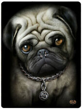 "Spiral Direct ""PUG LIFE"" Couverture POLAIRE /Dog/Funny/Cut/Gotique/Couverture"