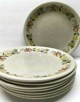 """Lot Set of EIGHT Wedgwood Quince 10 1/2"""" DINNER Plates NEVER USED UNUSED 8"""