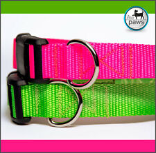 Dog Collars - Various colors and sizes