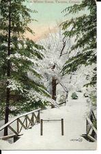 A Winter Scene, Toronto, Ontario, Canada, vintage postcard