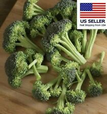 Monflor broccoli seed.  Pack of 50 seeds.  Plant now for fall/winter! Non-GMO.