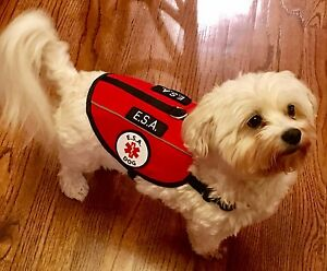 Service Dog Vest ESA Harness Emotional Support Animal Patches ALL ACCESS CANINE™