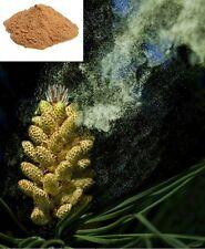 Powerful Wild Harvest Masson Pine Pollen Extract 20:1 Extraction Powder 100Grams