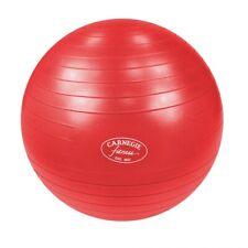 Balle gymnastique Ø 75cm Ballon de massage & fitness max. 300kg + pompe