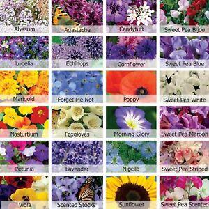 Bumper Flower Seed Pack 22 Varieties Over 3100 Seeds Butterfly & Bee Attracting.